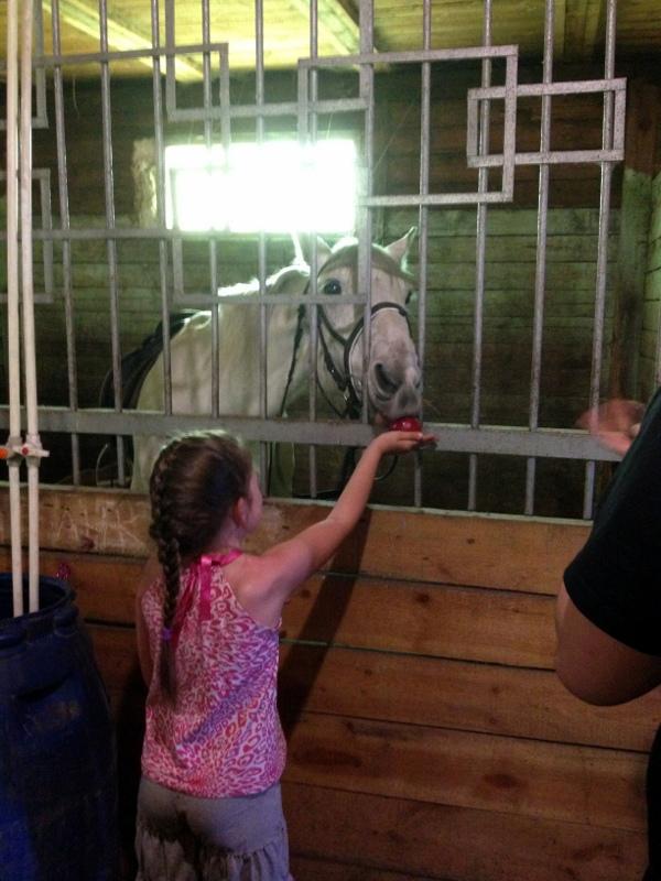 Дочь Ирины Комаровой кормит лошадку