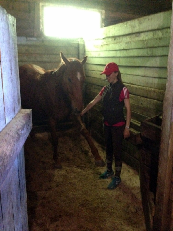 Лиза показывает, чему научилась лошадкэ под её руководством