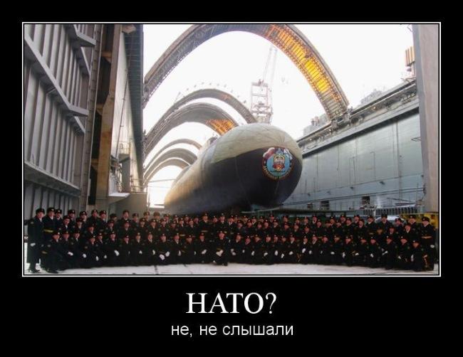 НАТО. Не, не слышали